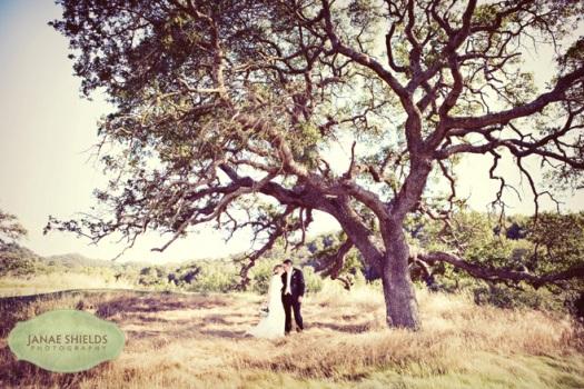 Wedding at Cinnabar Hills